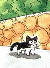 賤貓小嘰的幸福生活